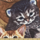 Winter Fleece Prints Kittens Polyester Fabric - Brown