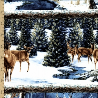 http://ep.yimg.com/ay/yhst-132146841436290/winter-stillness-scenic-stripe-cotton-fabric-white-20.jpg