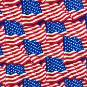 WinterFleece Old Glory Polyester Fabric - Multi