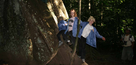Children�s Rainforest Trail