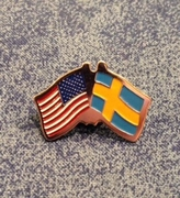 American / Swedish Lapel Pin