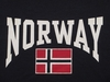 Norway and Norwegian Flag Long Sleeved T-Shirt