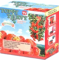 Topsy Turvy Strawberry Planter