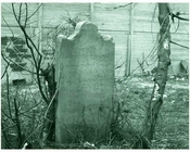 Catherine Snediker's Gravestone, East New York - 1900