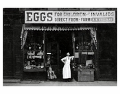 Country Eggs Store Sunset Park