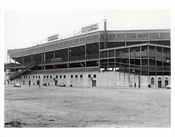 Ebbets Field Back