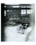 Ebbets Field Demolition - interior view