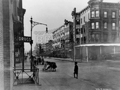 First Street northwest to Seventh Avenue; formerly the Port Road during the 1776 Battle of Brooklyn, 1922