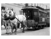 Horse Drawn Wagons & Trolleys