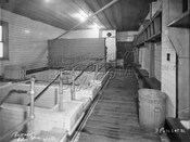 Mikvah (Ritual Baths) in the basement of Temple Beth Aron, 259 Division, 1952