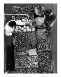 overhead view of a pushcart produce stand on Belmont Avenue, Brooklyn NY