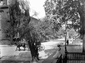 Typical Ft. Greene scene during the Nineteenth Century. Can you identify the specific location?