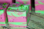 Summer Watermelon Marshmallow
