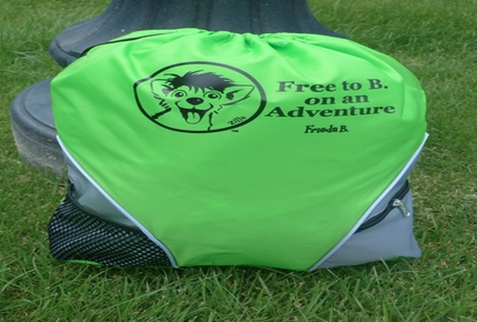 Frieda B. Adventure Bag