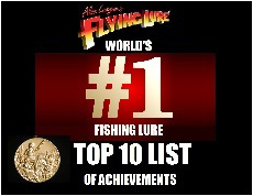 Top 10 Achievements