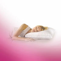 Core Sleep Double Zone Pillow