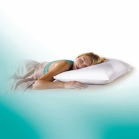 Core Sleep Down Wrap Pillow by Pacific Coast Feather
