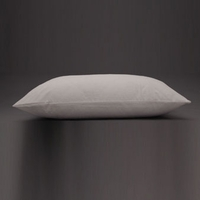 DreamFit Pillow Protector Pair