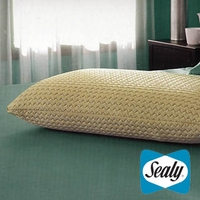 Sealy Embody Optimal ProFormance Memory Foam Pillow by Pacific Coast Feather