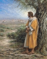I Would Have Gathered Thee by Jon McNaughton - 10 Framed & Unframed Options