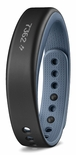 Garmin Vivosmart Activity Tracker Plus Smart Notifications (Blue)