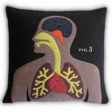 Anatomy Pillow