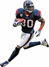 Andre Johnson Fathead Jr. Wall Decal