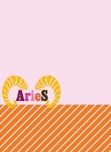 Aries Peel & Stick Dry-Ease Board