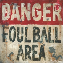 Baseball Danger Foul Ball Canvas Wall Art