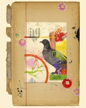 Bird Collage 905 Canvas Wall Art