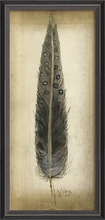 Black Speckled Feather Framed Wall Art