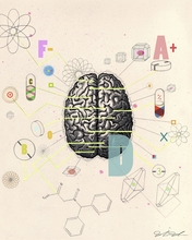Brain Canvas Wall Art