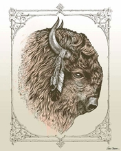 Buffalo Head Canvas Wall Art