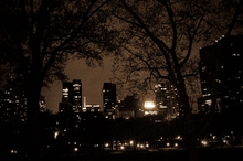 Central Park at Night Wall Art