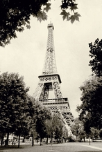 Eiffel Tower Black and White Wall Art