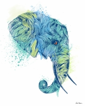 Elephant Head Canvas Wall Art