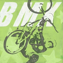 Extreme Sports BMX Canvas Art