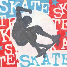 Extreme Sports Skateboard Canvas Art