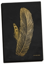 Feather on Black I Canvas Wall Art