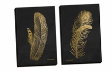 Feather on Black I, II Canvas Wall Art Set