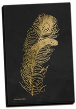 Feather on Black II Canvas Wall Art