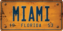 Florida Custom License Plate Art