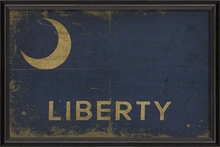 Fort Moultrie Liberty Flag Framed Wall Art