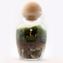 I Heart You Readymade Terrarium