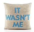 It Wasn't Me Recycled Felt Throw Pillow