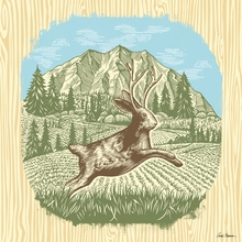 Jackalope Jump Canvas Wall Art