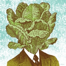 Lettuce Head Canvas Wall Art