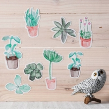 Mini Succulents Fabric Wall Decals