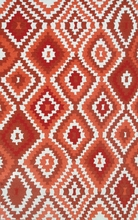 Navajo Red Outdoor Rug