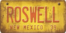 New Mexico Custom License Plate Art